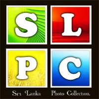 Sri Lanka Photo Collection